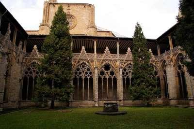 Двор Кафедрального собора