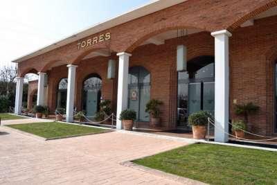 Магазин вин Торрес