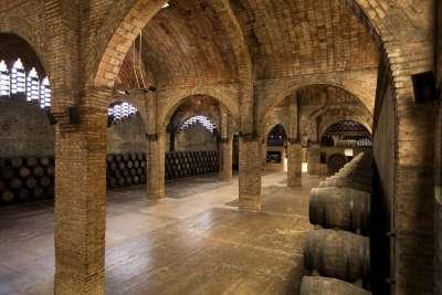 Музей вина внутри