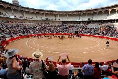Бои быков в Малаге
