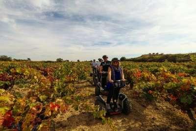 Экскурсия по виноградникам