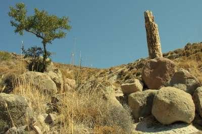 Природные памятники