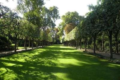 Сад Матиньонского дворца