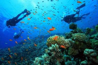 Подводный мир Греции