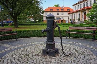 Музей Плоцка
