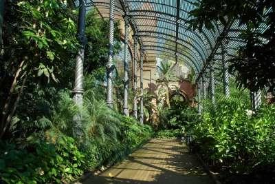 Ботанический сад в парке