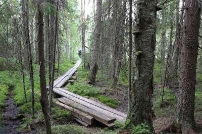 Национальный парк Финляндии