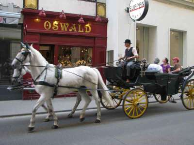 Упряжки в Вене