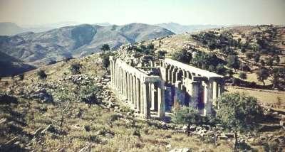Храм Аполлона Эпикурейского. Общий вид