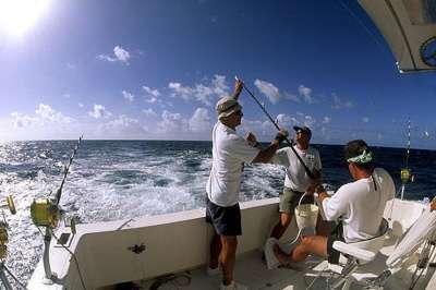 Ловля рыбы с яхты