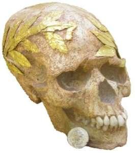 Череп с золотым венком